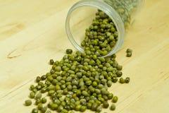 Sprouts o feijão Fotos de Stock