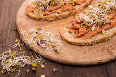 Sprouts and vegan spread of beans Stock Image