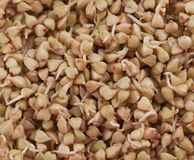 Sprouts and a very useful buckwheat Stock Images