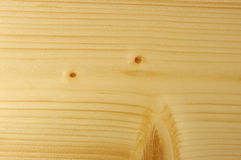 The Spruce. The painting of wood, spruce, auxiliary view Royalty Free Stock Image