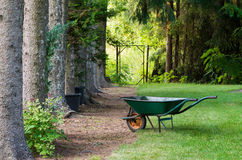 Spruce avenue and wheelbarrow Stock Photo