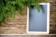 Spruce background. Stock Photos