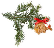 Spruce bow with a gingerbread fish isolated Royalty Free Stock Photo
