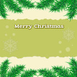Spruce, branch, background Christmas  Royalty Free Stock Photography