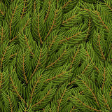 Spruce branch background. FIR branch seamless pattern.. Christmas tree branch texture. Natural ornament Stock Images