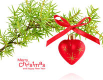 Spruce branch with Christmas ball Royalty Free Stock Photo