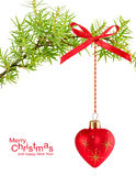 Spruce branch with Christmas ball Royalty Free Stock Images