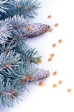 Spruce Branch with Hoar-Frost Royalty Free Stock Photos