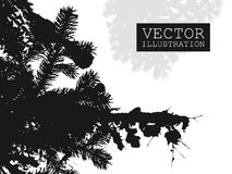 Spruce branch silhouette vector Royalty Free Stock Images
