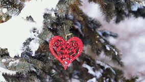 Spruce Branch with Snow and Heart. Sways in the Wind stock video