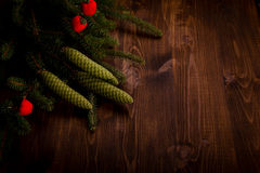Spruce branch and tiny red apples Royalty Free Stock Photo