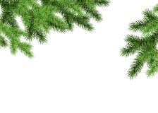 Spruce branch on white background. Green fir. Realistic Christmas tree. Vector illustration for Xmas cards, banners, flyers, New year party posters Stock Photo