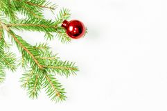 Spruce branch on a white background with a red Christmas glass ball.. Christmas holiday background