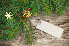 Spruce branches with blank sheet Stock Image