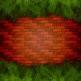 Spruce branches on a brick wall Royalty Free Stock Photos