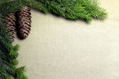 Spruce branches with cones on the background of coarse cloth Royalty Free Stock Image