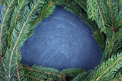 The spruce branches lying on the chalkboard. Christmas tree black background. New Year. Royalty Free Stock Photo