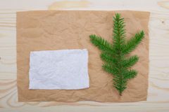 Spruce branches  paper texture. Spruce branches paper texture for design christmas new year Royalty Free Stock Images