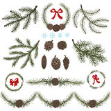 Spruce branches with Pine cones,red bow set Royalty Free Stock Images
