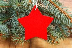 Spruce branches and red wooden star with copy space for text Stock Photography
