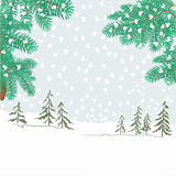 Spruce branches with snowflakes vector Royalty Free Stock Image