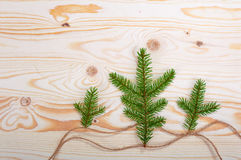 Spruce branches wood texture. For design christmas new year royalty free stock photos