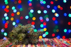 Spruce on Christmas lights background Stock Images