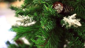 Spruce cones on Christmas tree stock video