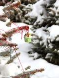 Spruce dekorerade toys Royaltyfri Bild