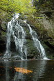 Spruce Flat Falls. In the Tremo9nt area of the Great Smoky Mountains Royalty Free Stock Photo