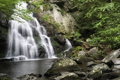 Spruce Flats Falls Royalty Free Stock Image