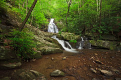Spruce flats Falls Royalty Free Stock Photography