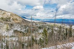 Spruce forest after natural disaster in High Tatras. Mountains, Slovak republic. Winter natural scene stock photography