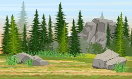 Spruce forest, stones and mountains, grass. The nature of Europe and America royalty free illustration
