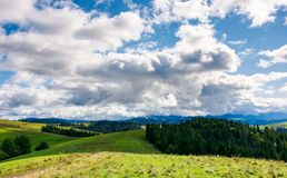 Spruce forests of carpathian mountains. Beautiful autumn landscape with dramatic cloudscape Stock Image