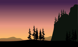 Spruce in hills silhouette. At the sunset Royalty Free Stock Photography