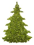 Spruce made from pumpkin seeds royalty free stock images