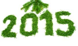 2015 of spruce needles Royalty Free Stock Image