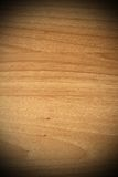 Spruce plywood beige texture Stock Photography