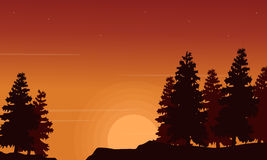 Spruce scenery silhouettes collection stock Stock Image