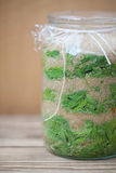 Spruce sprouts syrup - making of Stock Photography
