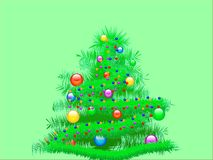spruce tree Arkivfoton