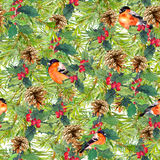 Spruce tree branches, birds, cones, mistletoe. Christmas seamless background. Watercolor Royalty Free Stock Photo