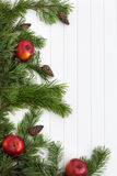 Spruce tree branches frame, evergreen garland Stock Image