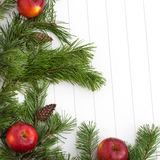 Spruce tree branches frame, evergreen garland Stock Photos
