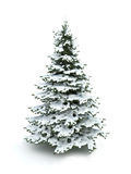 Spruce tree (Christmas tree) covered with snow Stock Photos