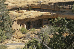Spruce Tree House, Mesa Verde, Colorado, USA Royalty Free Stock Photography