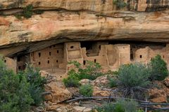 View of Mesa Verde Indian ruins from across the canyon. Spruce tree House at Mesa Verde Indian ruins stock images