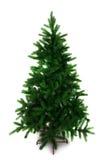 Spruce treen för jul Arkivbild