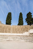 Spruce Trees Over Pompeii Stadium Royalty Free Stock Photography